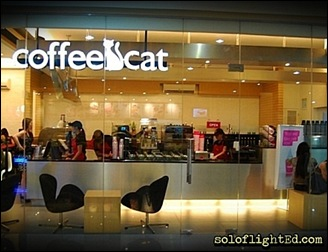 coffee cat cebu