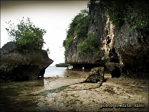 water camotes