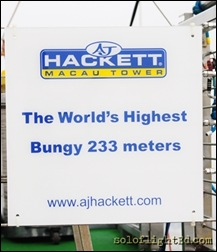 highest bungy