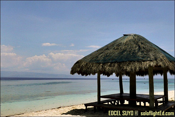 moalboal cebu beach