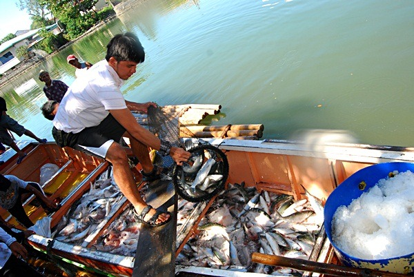 pangasinan fishing