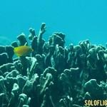 fun-dive-apo-island.jpg